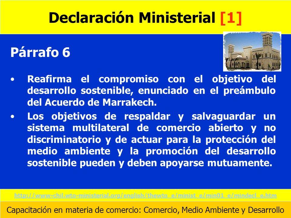 Declaración Ministerial [1]